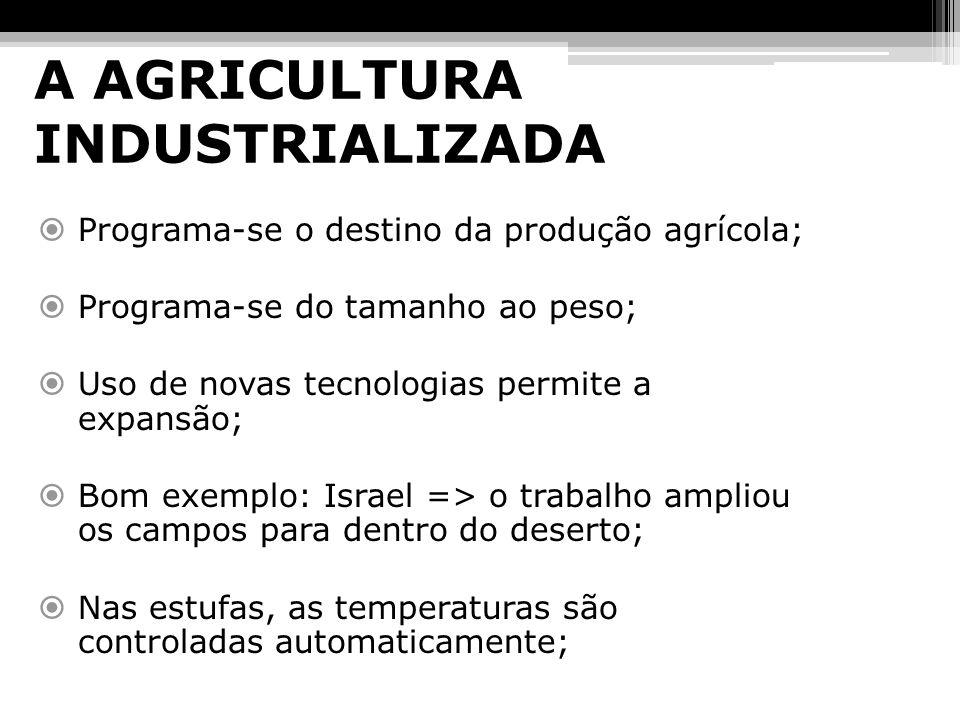 A AGRICULTURA INDUSTRIALIZADA Programa-se o destino da produção agrícola; Programa-se do tamanho ao peso; Uso de novas tecnologias permite a expansão;