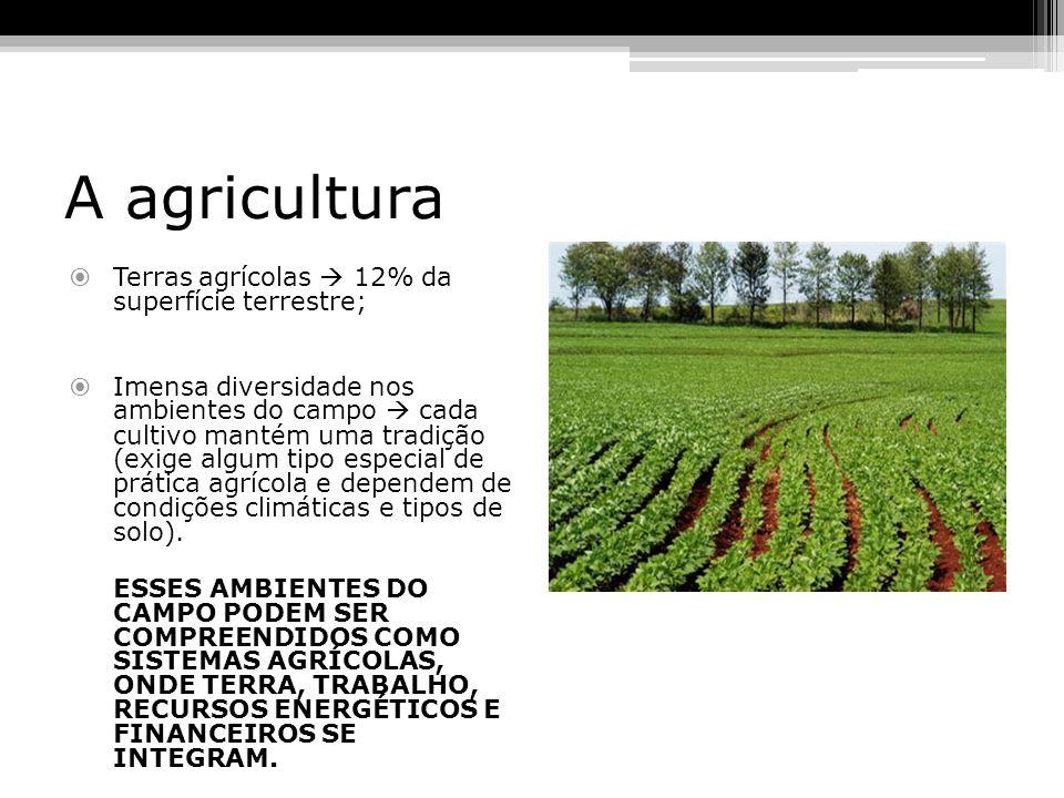 A agricultura Terras agrícolas 12% da superfície terrestre; Imensa diversidade nos ambientes do campo cada cultivo mantém uma tradição (exige algum ti