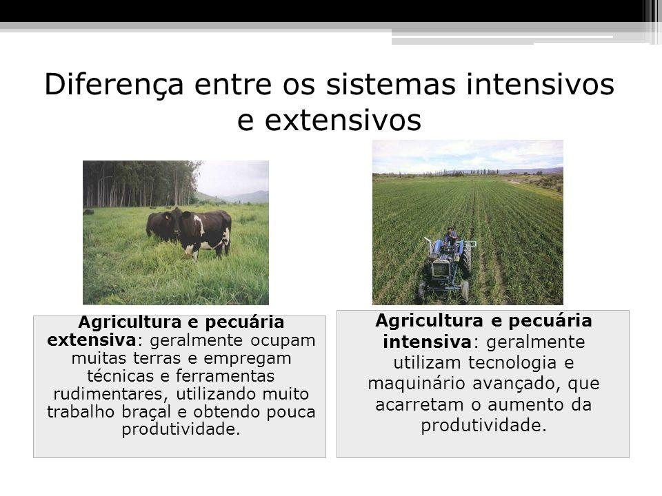 Diferença entre os sistemas intensivos e extensivos Agricultura e pecuária extensiva: geralmente ocupam muitas terras e empregam técnicas e ferramenta