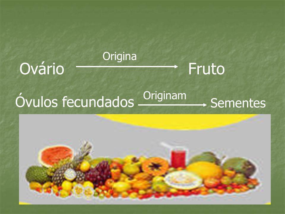 OvárioFruto Origina Óvulos fecundados Originam Sementes