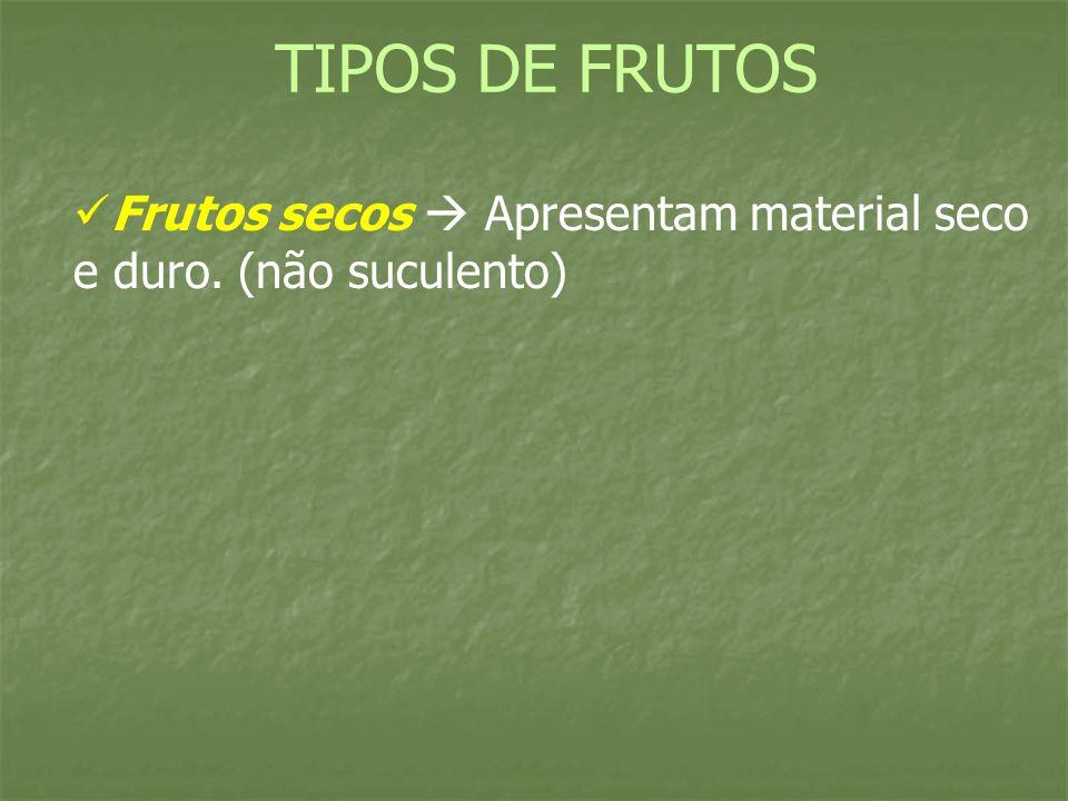 Frutos secos Apresentam material seco e duro. (não suculento) TIPOS DE FRUTOS
