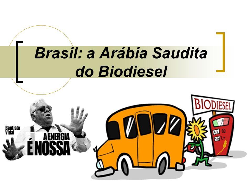 Biodiesel: o que é.