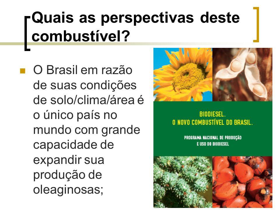 Quais as perspectivas deste combustível? O Brasil em razão de suas condições de solo/clima/área é o único país no mundo com grande capacidade de expan