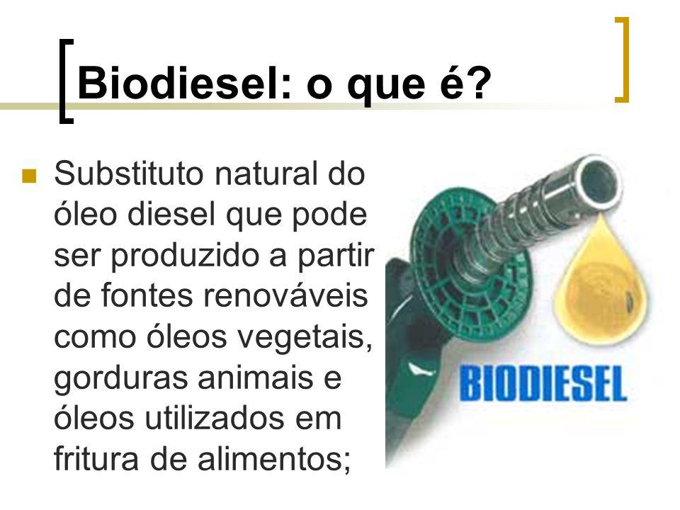 Biodiesel: o que é? Substituto natural do óleo diesel que pode ser produzido a partir de fontes renováveis como óleos vegetais, gorduras animais e óle