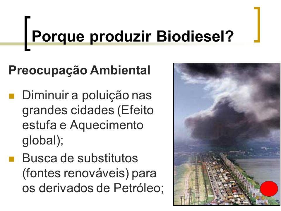 Porque produzir Biodiesel? Preocupação Ambiental Diminuir a poluição nas grandes cidades (Efeito estufa e Aquecimento global); Busca de substitutos (f