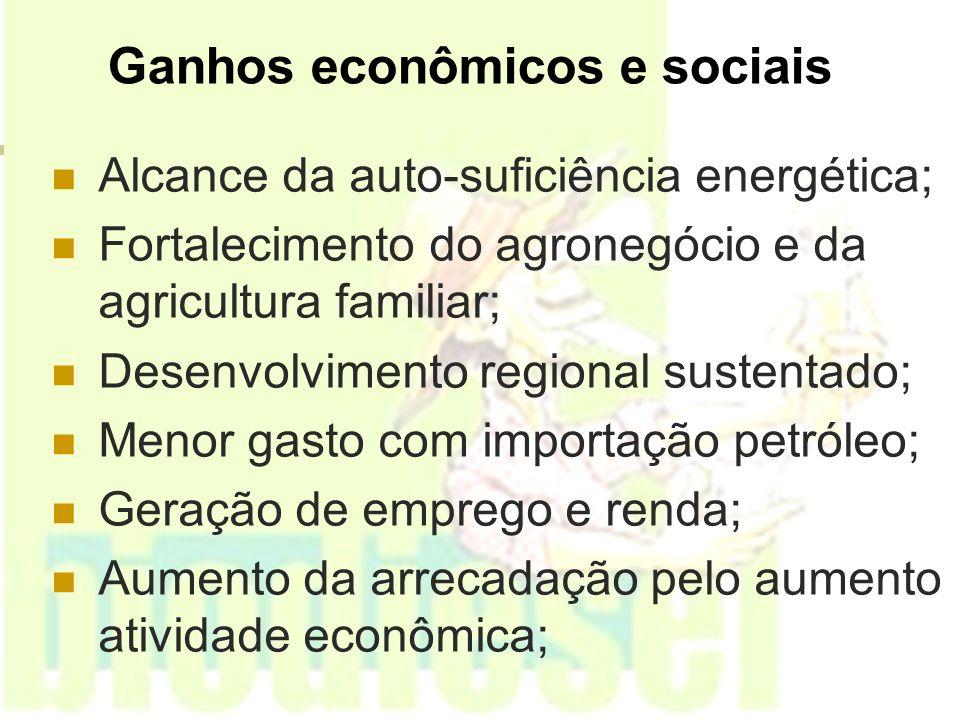 Ganhos econômicos e sociais Alcance da auto-suficiência energética; Fortalecimento do agronegócio e da agricultura familiar; Desenvolvimento regional