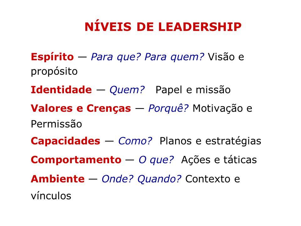 Espírito Para que? Para quem? Visão e propósito Identidade Quem? Papel e missão Valores e Crenças Porquê? Motivação e Permissão Capacidades Como? Plan