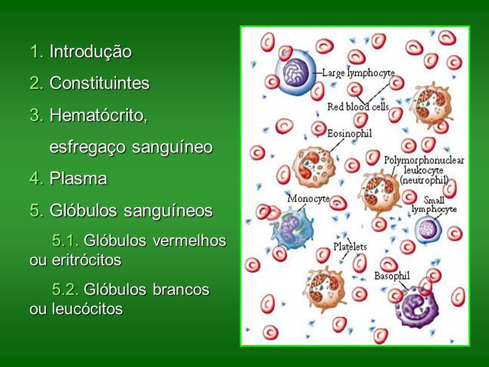 1. Introdução 2. Constituintes 3. Hematócrito, esfregaço sanguíneo esfregaço sanguíneo 4. Plasma 5. Glóbulos sanguíneos 5.1. Glóbulos vermelhos ou eri