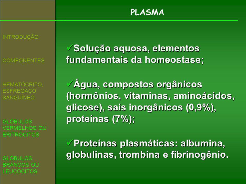 PLASMA COMPONENTES INTRODUÇÃO GLÓBULOS VERMELHOS OU ERITRÓCITOS HEMATÓCRITO, ESFREGAÇO SANGUÍNEO GLÓBULOS BRANCOS OU LEUCÓCITOS Solução aquosa, elemen