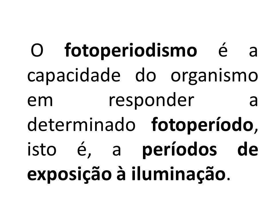Movimentos Vegetais O fotoperiodismo é a capacidade do organismo em responder a determinado fotoperíodo, isto é, a períodos de exposição à iluminação.