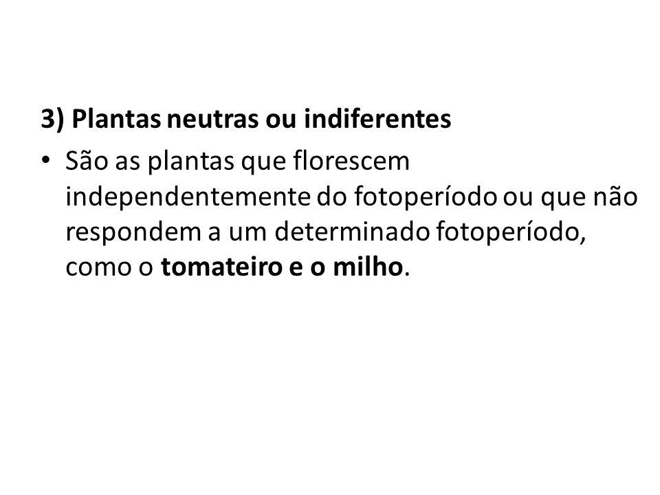 3) Plantas neutras ou indiferentes São as plantas que florescem independentemente do fotoperíodo ou que não respondem a um determinado fotoperíodo, co