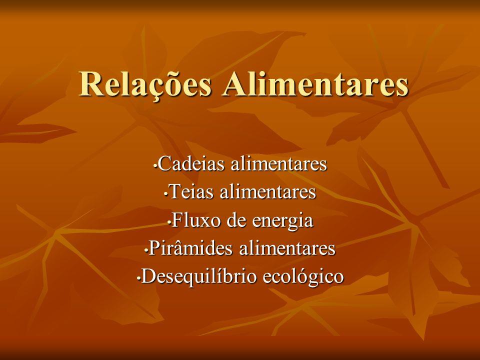 Relações Alimentares Cadeias alimentares Cadeias alimentares Teias alimentares Teias alimentares Fluxo de energia Fluxo de energia Pirâmides alimentar