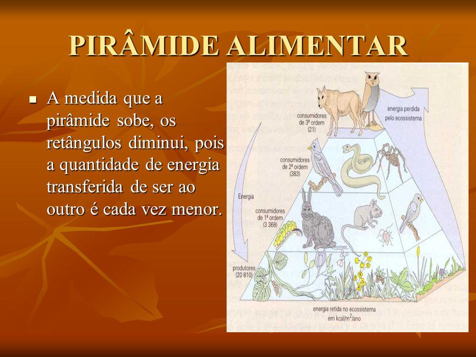 PIRÂMIDE ALIMENTAR A medida que a pirâmide sobe, os retângulos diminui, pois a quantidade de energia transferida de ser ao outro é cada vez menor. A m