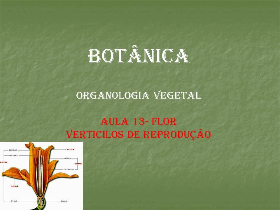 BOTÂNICA ORGANOLOGIA VEGETAL AULA 13- FLOR VERTICILOS DE REPRODUÇÃO