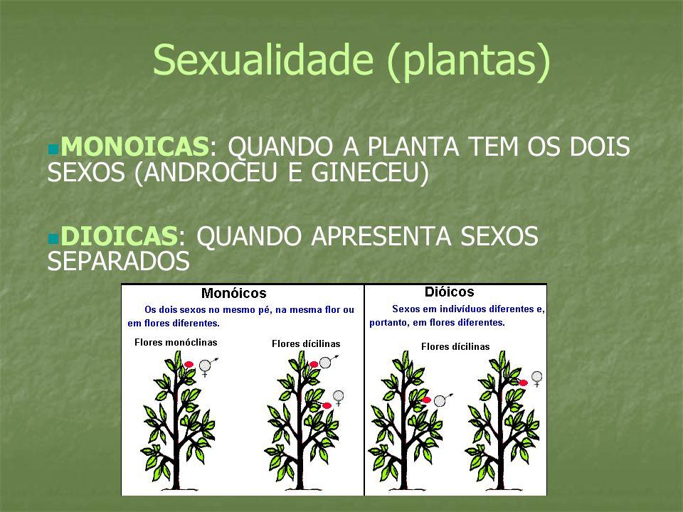 Sexualidade (plantas) MONOICAS: QUANDO A PLANTA TEM OS DOIS SEXOS (ANDROCEU E GINECEU) DIOICAS: QUANDO APRESENTA SEXOS SEPARADOS