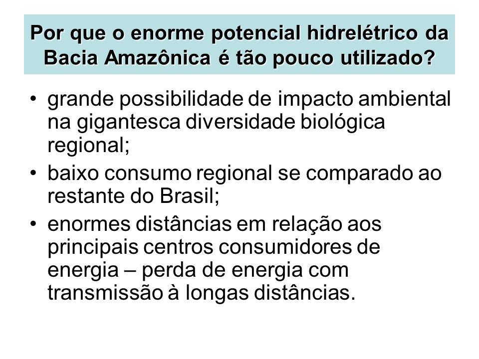Por que o enorme potencial hidrelétrico da Bacia Amazônica é tão pouco utilizado? grande possibilidade de impacto ambiental na gigantesca diversidade