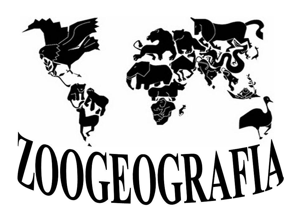 INTRODUÇÃO Zoogeografia - divisão das áreas geográficas através da fauna distinta de cada região (ecozonas terrestres).