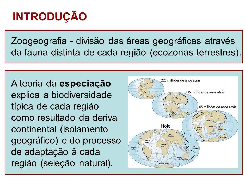 INTRODUÇÃO Zoogeografia - divisão das áreas geográficas através da fauna distinta de cada região (ecozonas terrestres). A teoria da especiação explica