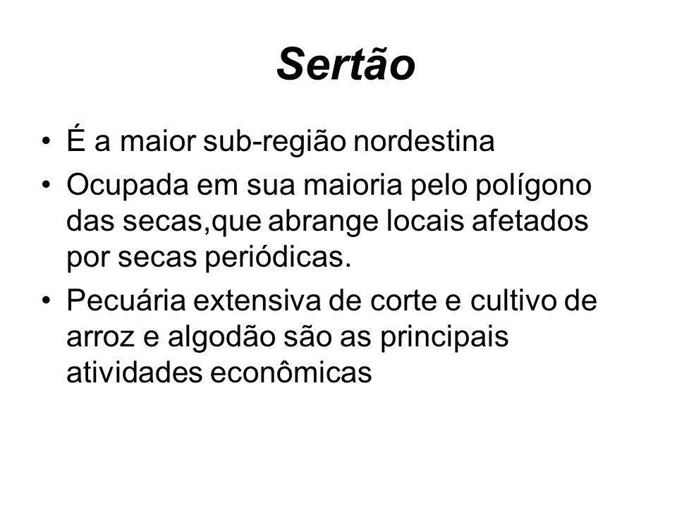 Sertão É a maior sub-região nordestina Ocupada em sua maioria pelo polígono das secas,que abrange locais afetados por secas periódicas. Pecuária exten