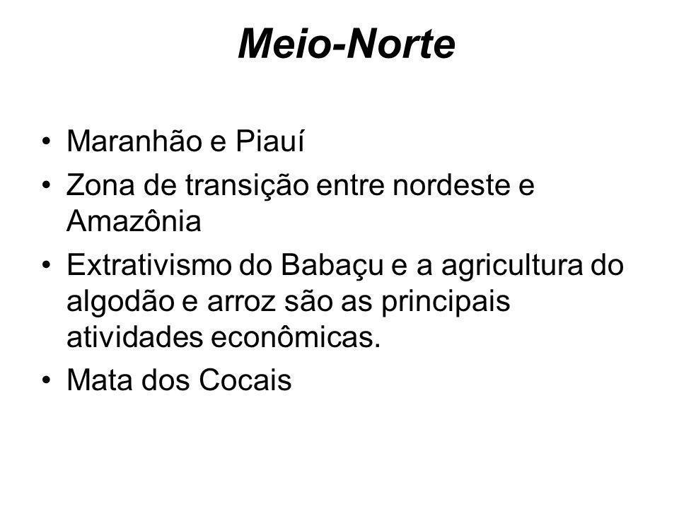 Meio-Norte Maranhão e Piauí Zona de transição entre nordeste e Amazônia Extrativismo do Babaçu e a agricultura do algodão e arroz são as principais at