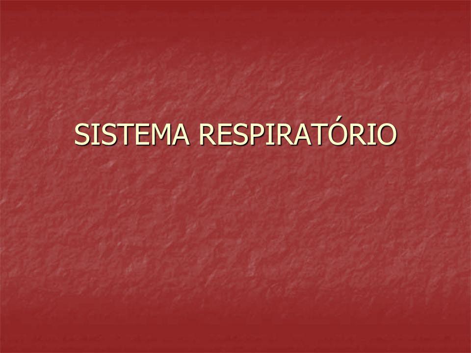 Transporte de gases Oxigenio Oxiemoglobina