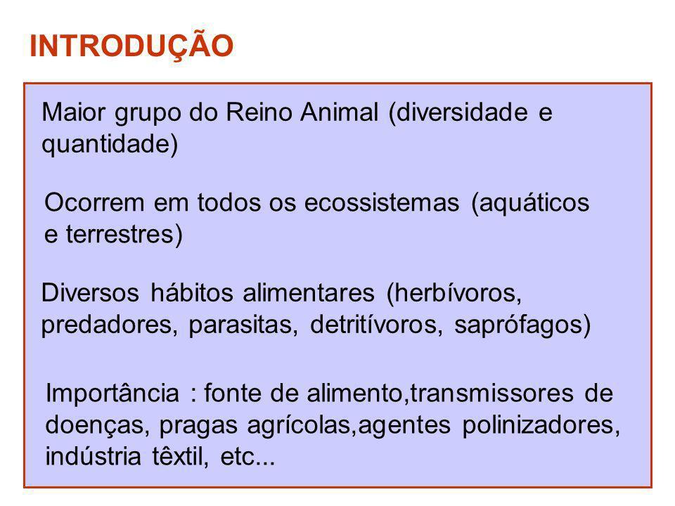 INTRODUÇÃO Maior grupo do Reino Animal (diversidade e quantidade) Ocorrem em todos os ecossistemas (aquáticos e terrestres) Diversos hábitos alimentar