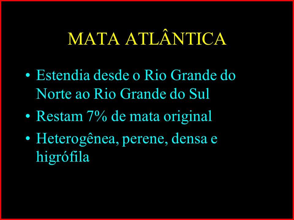 MATA ATLÂNTICA Estendia desde o Rio Grande do Norte ao Rio Grande do Sul Restam 7% de mata original Heterogênea, perene, densa e higrófila