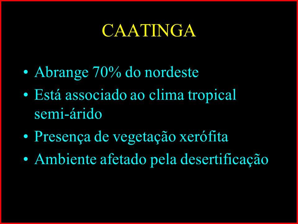 CAATINGA Abrange 70% do nordeste Está associado ao clima tropical semi-árido Presença de vegetação xerófita Ambiente afetado pela desertificação