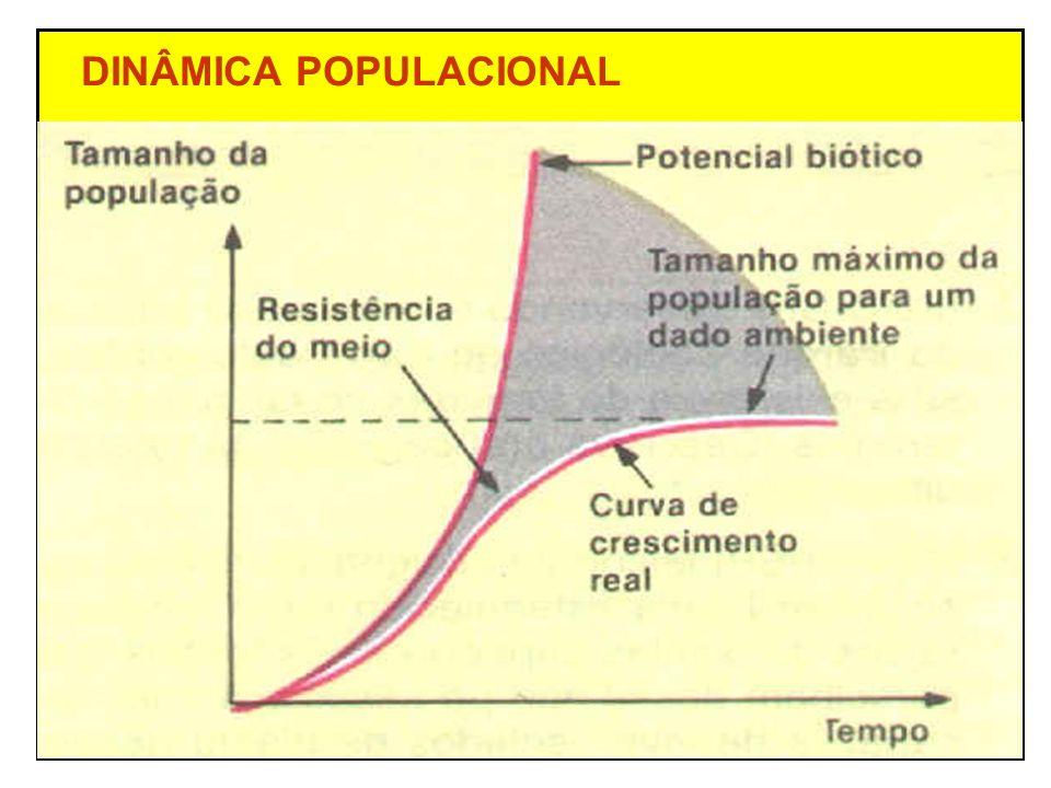 DINÂMICA POPULACIONAL Fatores que afetam o tamanho da população N + I > M + E (pop.