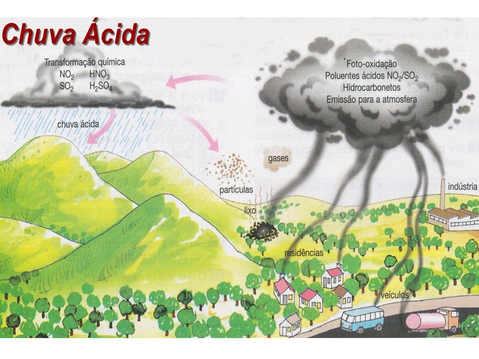 CHUVA ÁCIDA -contaminação de rios, lagos e solo - danificação de raízes - indisponibilização de nutrientes do solo - queimaduras nas folhas das plantas - destruição de monumentos arquitetônicos Reação de óxidos de nitrogênio e de enxofre com água (atmosfera)
