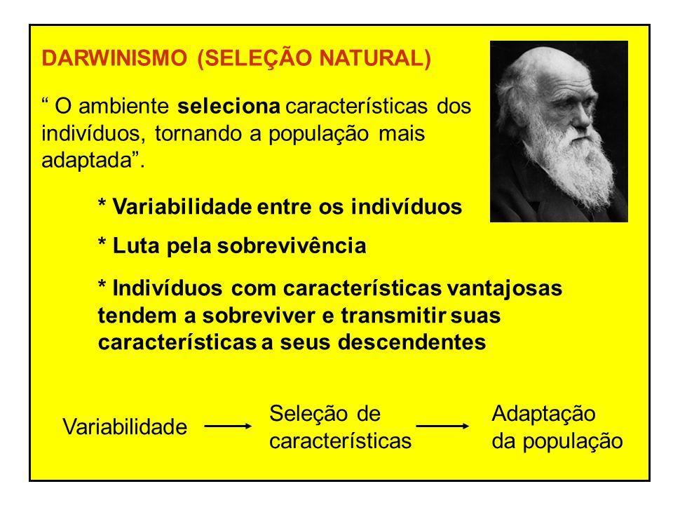 DARWINISMO (SELEÇÃO NATURAL) O ambiente seleciona características dos indivíduos, tornando a população mais adaptada.