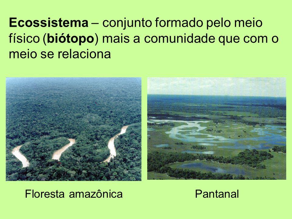 Ecossistema – conjunto formado pelo meio físico (biótopo) mais a comunidade que com o meio se relaciona Floresta amazônicaPantanal
