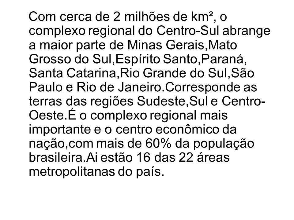 Concentração DE PIB Melhor Infra-Estrutura do país Alto desenvolvimento Tecnológico Mais diversificado parque industrial da America Latina Poder Executivo,Legislativo e Judiciário Extração de Petróleo