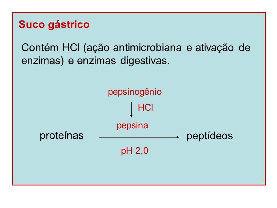 Bile Promove neutralização do pH (sais biliares) e emulsificação de gorduras.