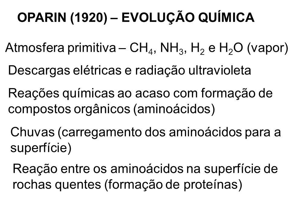 OPARIN (1920) – EVOLUÇÃO QUÍMICA Atmosfera primitiva – CH 4, NH 3, H 2 e H 2 O (vapor) Descargas elétricas e radiação ultravioleta Reações químicas ao