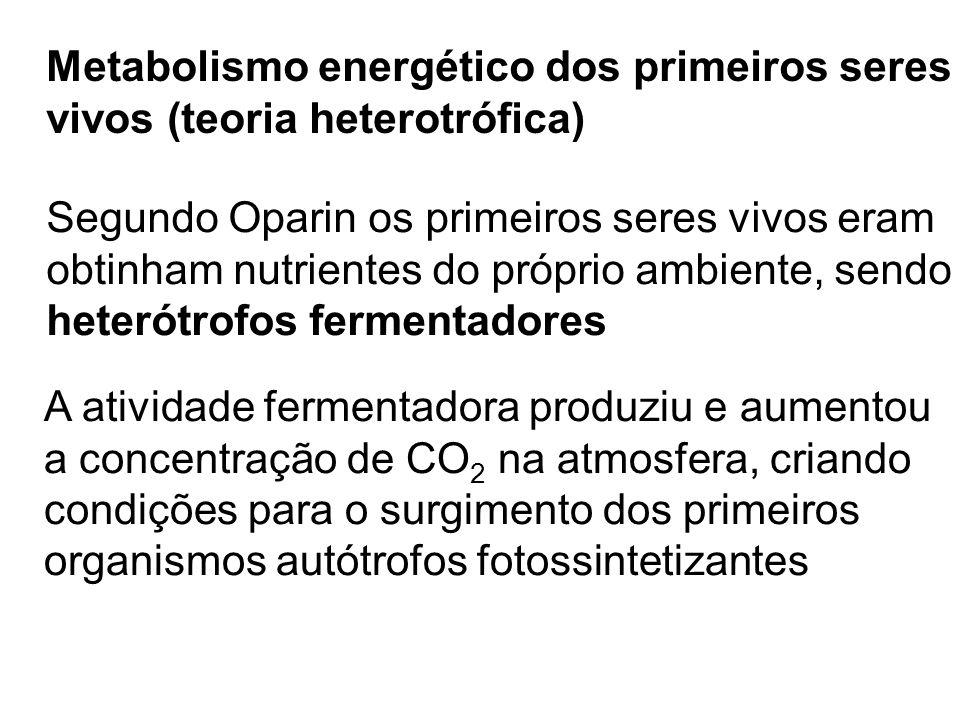 Metabolismo energético dos primeiros seres vivos (teoria heterotrófica) Segundo Oparin os primeiros seres vivos eram obtinham nutrientes do próprio am