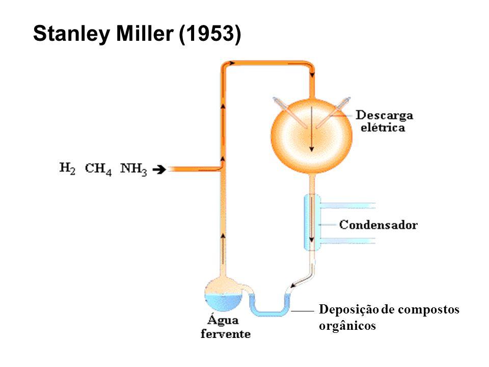 Stanley Miller (1953) Deposição de compostos orgânicos