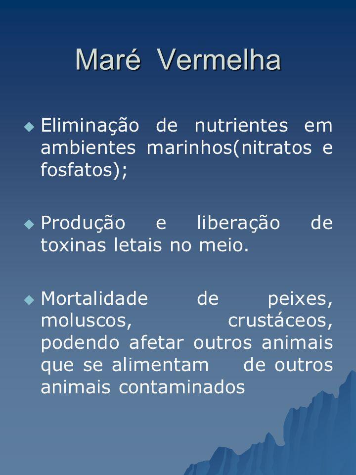 Maré Vermelha Eliminação de nutrientes em ambientes marinhos(nitratos e fosfatos); Produção e liberação de toxinas letais no meio. Mortalidade de peix