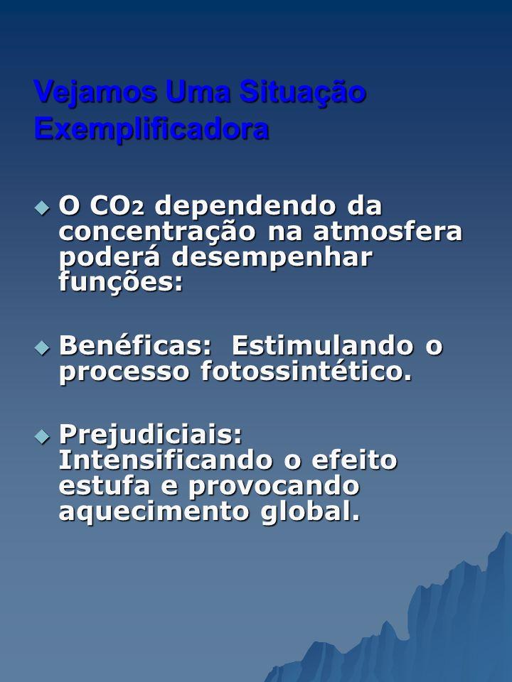Consequências do Efeito Estufa aumento da temperatura atmosférica; alterações climáticas; degelo de calotas polares extinção de espécies; inundação de áreas litorâneas