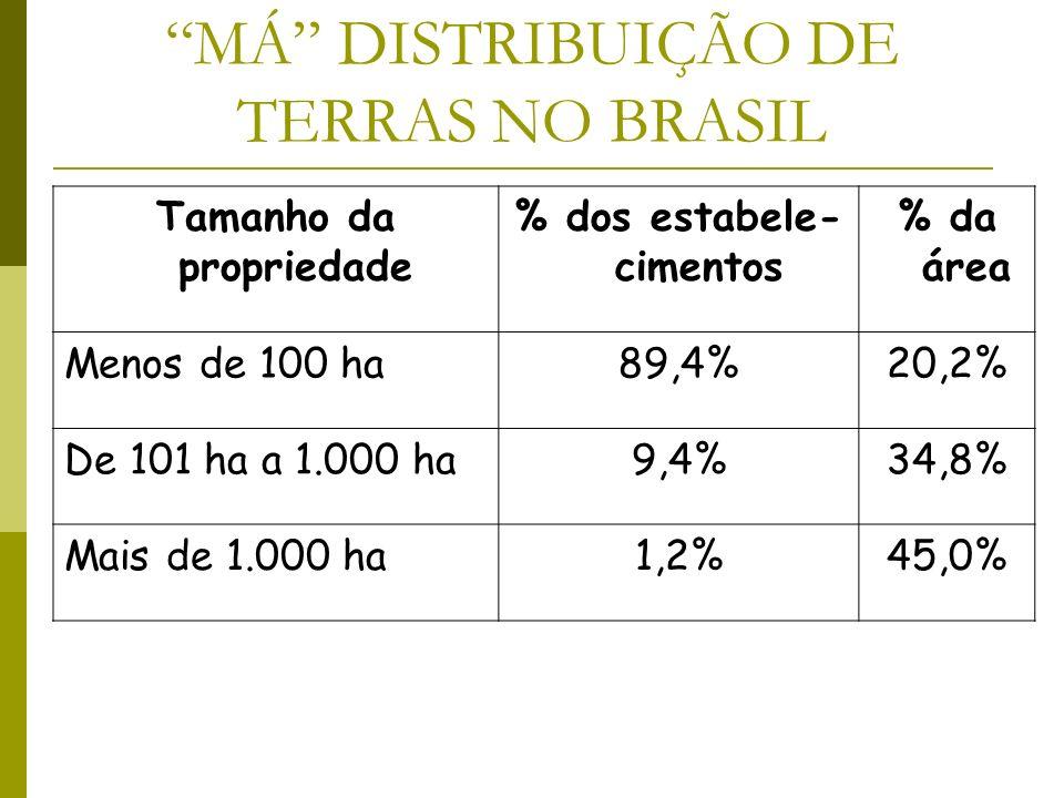 MÁ DISTRIBUIÇÃO DE TERRAS NO BRASIL Tamanho da propriedade % dos estabele- cimentos % da área Menos de 100 ha89,4%20,2% De 101 ha a 1.000 ha9,4%34,8%