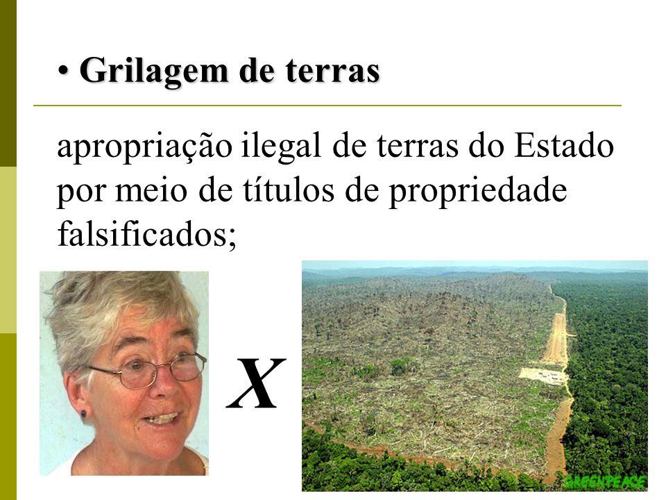 Grilagem de terras Grilagem de terras apropriação ilegal de terras do Estado por meio de títulos de propriedade falsificados; X