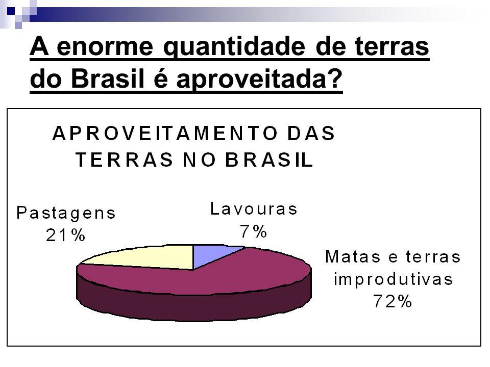 ATENÇÃO Os pequenos proprietários de terras, respondem por mais da metade da produção de alimentos no Brasil.