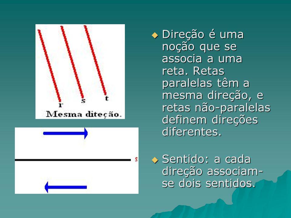 Direção é uma noção que se associa a uma reta. Retas paralelas têm a mesma direção, e retas não-paralelas definem direções diferentes. Direção é uma n