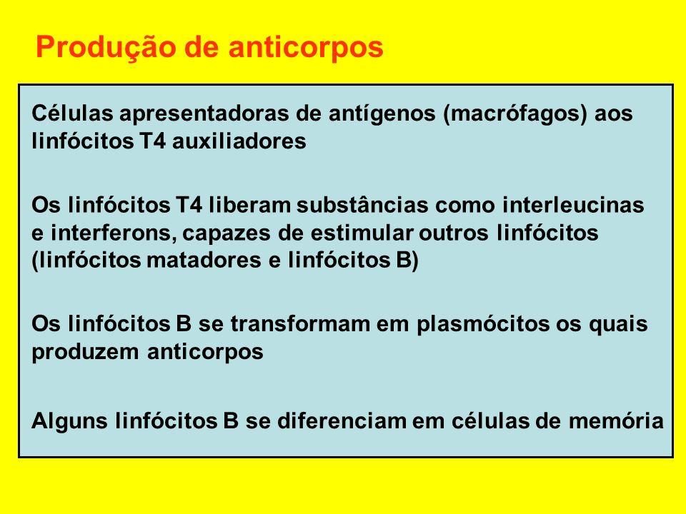 Células apresentadoras de antígenos (macrófagos) aos linfócitos T4 auxiliadores Os linfócitos T4 liberam substâncias como interleucinas e interferons,