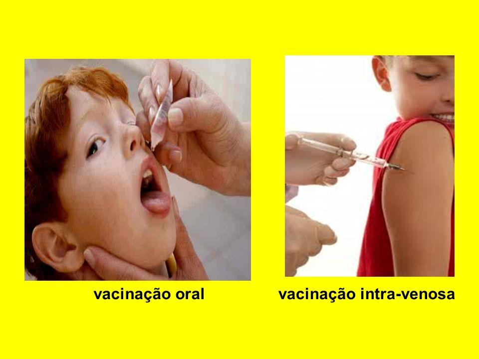 Imunidade Passiva Ocorre quando o organismo recebe anticorpos prontos, ou seja produzidos por outro organismo Natural Verificada em fetos que recebem anticorpos produzidos pelo organismo materno através da placenta, e em recém-nascidos que recebem anticorpos através da amamentação