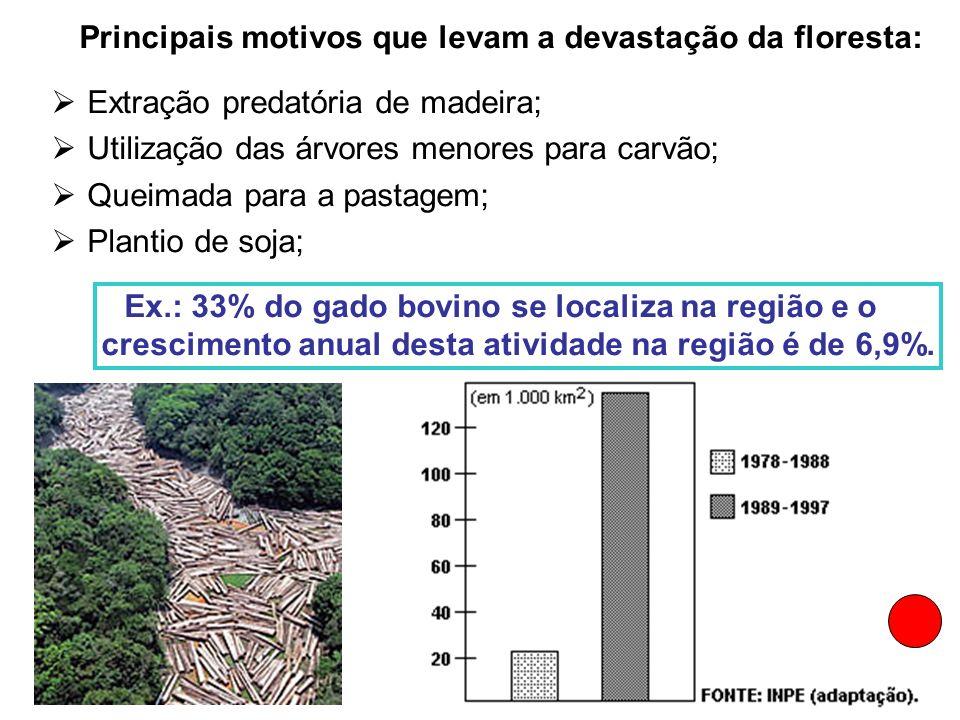 Principais motivos que levam a devastação da floresta: Extração predatória de madeira; Utilização das árvores menores para carvão; Queimada para a pas