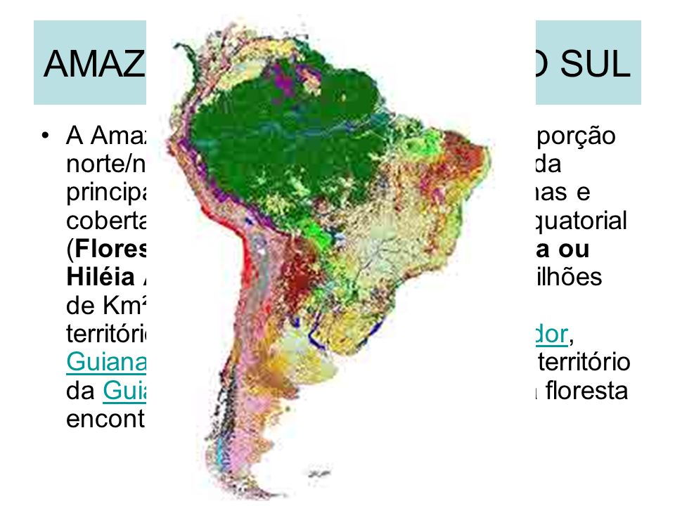 AMAZÔNIA NA AMÉRICA DO SUL A Amazônia é uma região localizada na porção norte/noroeste da América do Sul, definida principalmente pela bacia do rio Amazonas e coberta em grande parte pela floresta Equatorial (Floresta Pluvial Equatorial Amazônica ou Hiléia Amazônica).