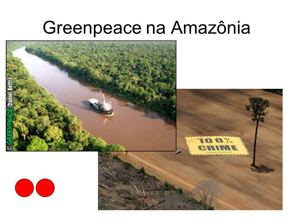 Greenpeace na Amazônia