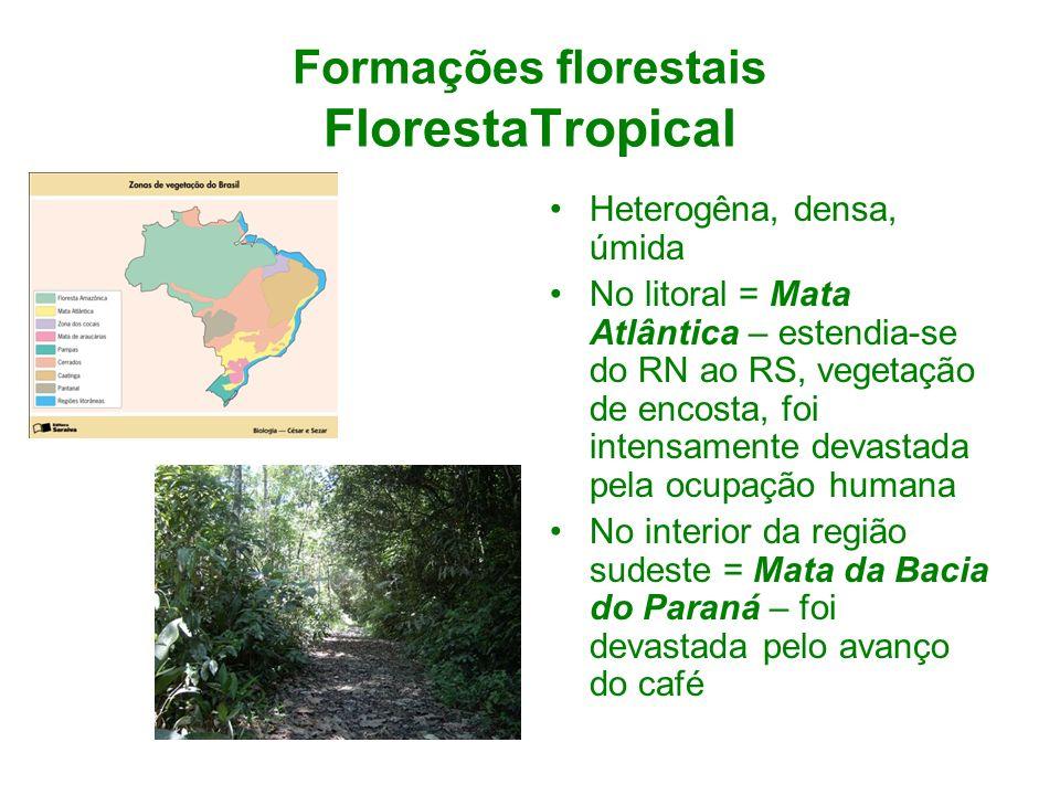Formações florestais FlorestaTropical Heterogêna, densa, úmida No litoral = Mata Atlântica – estendia-se do RN ao RS, vegetação de encosta, foi intens