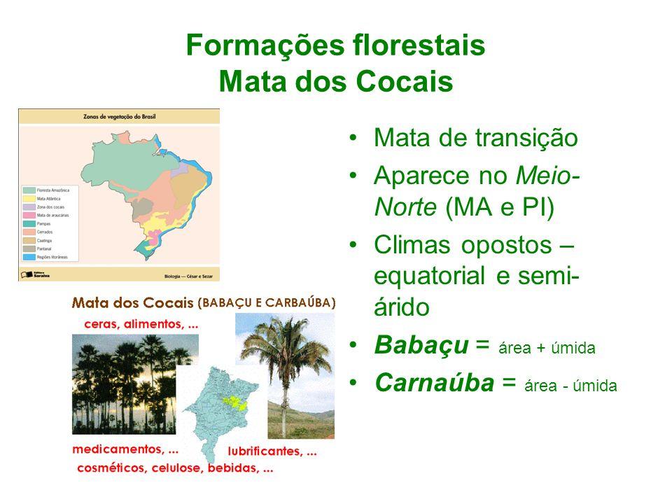 Formações florestais Mata dos Cocais Mata de transição Aparece no Meio- Norte (MA e PI) Climas opostos – equatorial e semi- árido Babaçu = área + úmid
